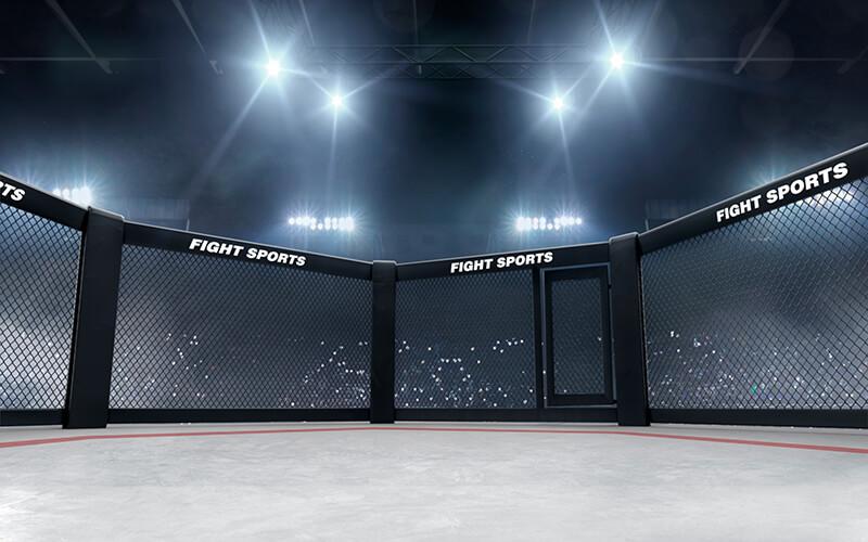 MMA transmisje na żywo i live stream online. Gdzie oglądać walki i gale?
