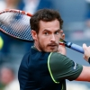 Analiza meczu: Paolo Lorenzi – Andy Murray (US Open)